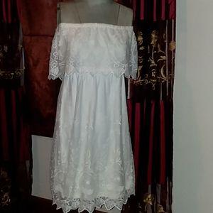 Lace Dress by Express